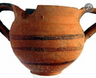 Κανθαρίσκος (από όπου και το όνομα του μανιταριού)