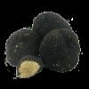 Μαύρη καλοκαιρινή τρούφα (Tuber aestivum)